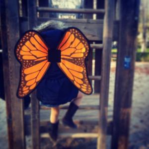 olivia_la_mariposa_2