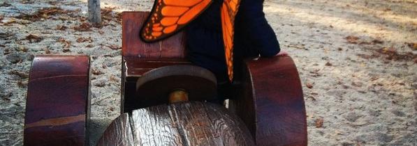 Olivia la mariposa (3)
